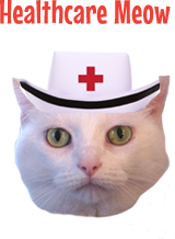 Healthcare Meow